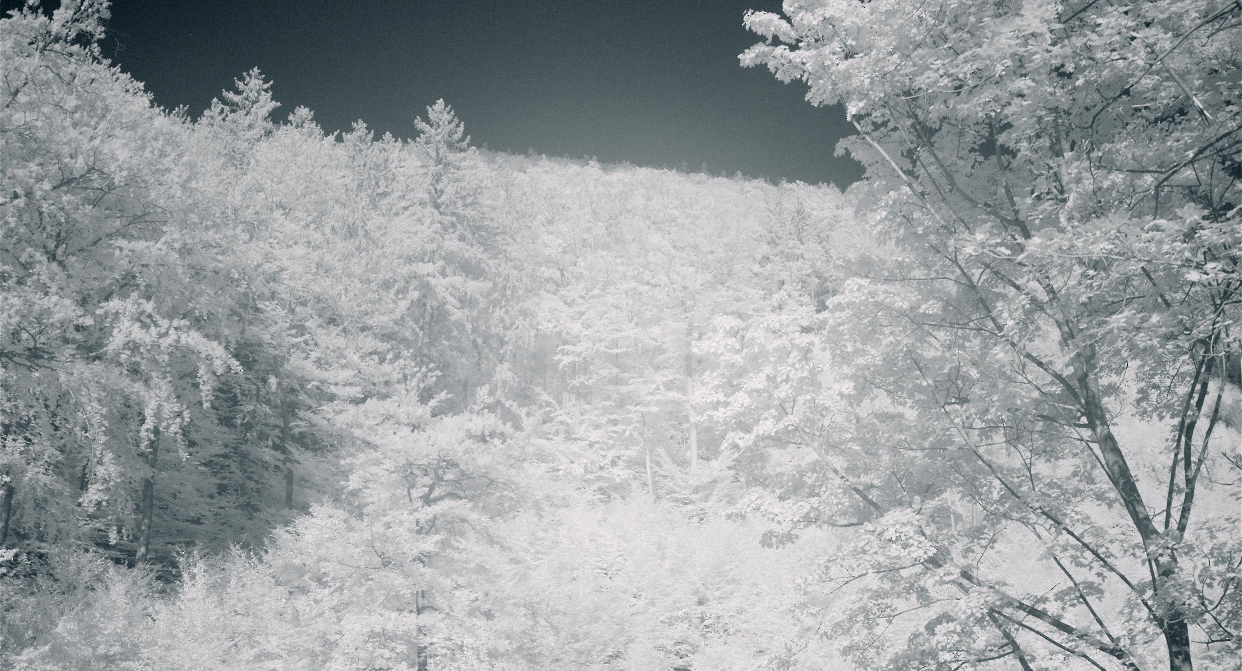Kaltes Tal